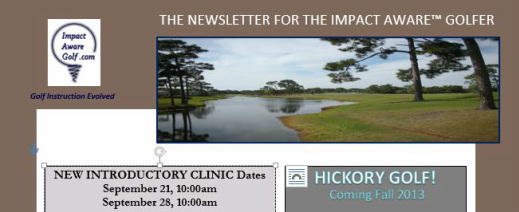 IMPACT AWARE™ Sample Newsletter